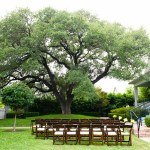 Wedding under the Oak at Hotel Saint Cecilia Austin Texas