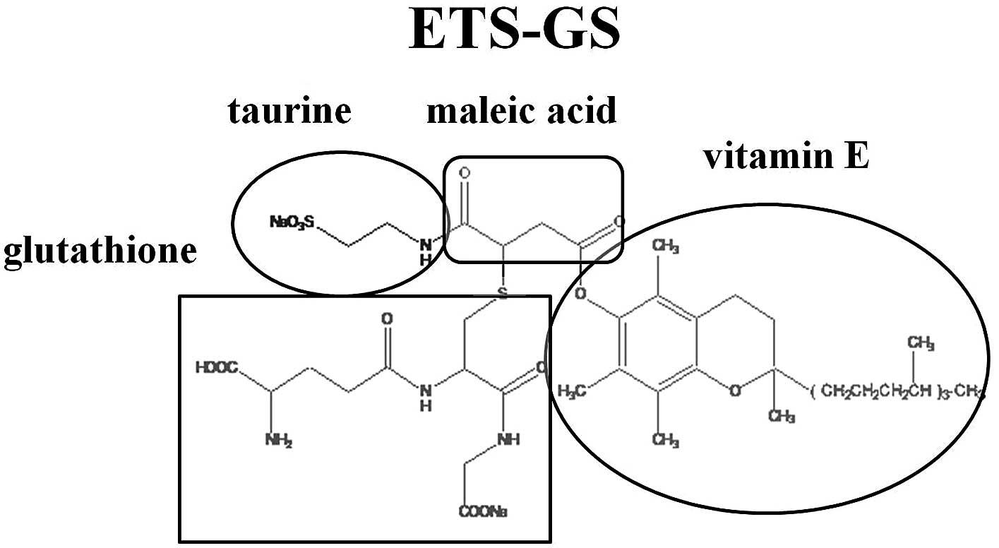 Gietmortel Gamma Effect Of The New Synthetic Vitamin E Derivative Ets Gs On