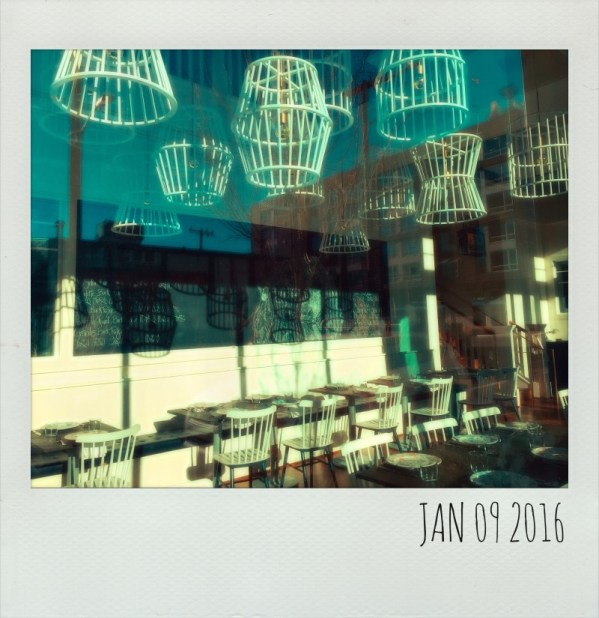 Polaroid Jan 9
