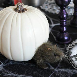 Elegant yet creepy Halloween table settings.