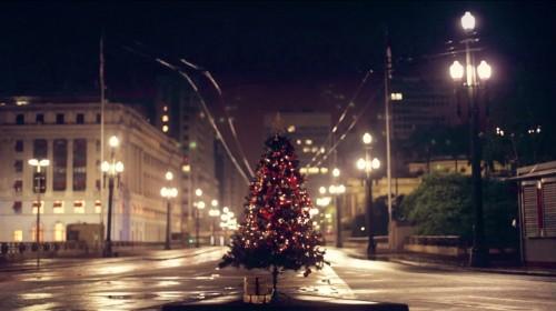 Projeto monta árvores de Natal em SP para arrecadar presentes a