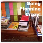 Going Planning Crazy!