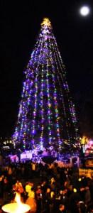 Idyllwild Christmas Tree Lit