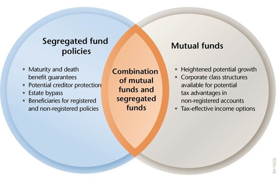 single stocks and mutual funds venn diagram