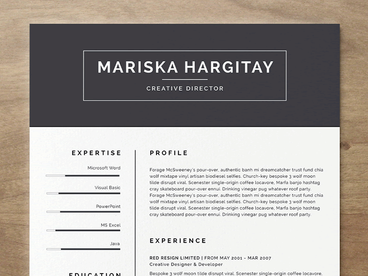 beautiful cv template free