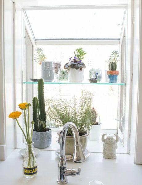 Πίσωα πό τον νεροχύτη συνήθως υπάρχει χώρος για μερικά όμορφα μυρωδάτα φυτά.