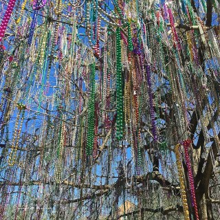 Catching beads in New Orleans, LA…