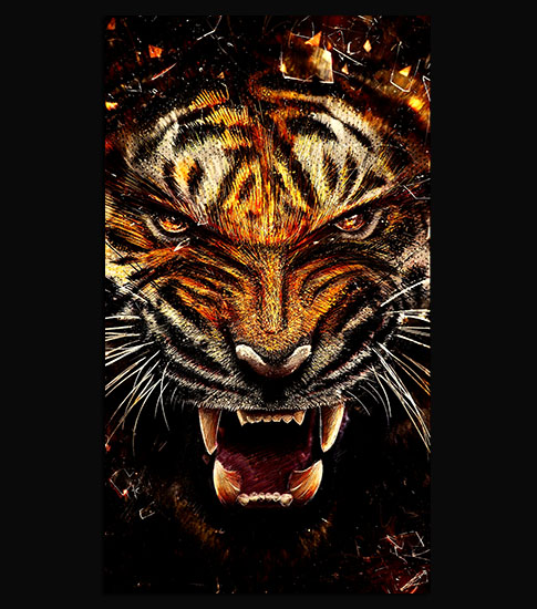 3d Cheetah Wallpaper Wild Tiger Hd Wallpaper For Your Mobile Phone