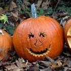 Make Halloween a healthy, teachable moment