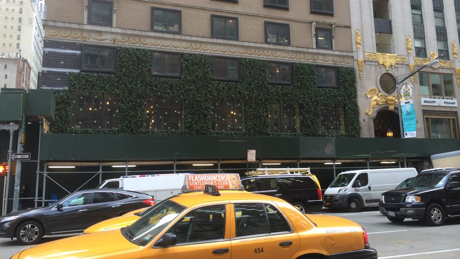 Green Wall Project In New York City Sponzilli Landscape - Green Walls In New York