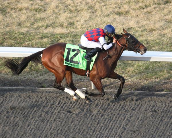 Route du Kentucky Derby/Kentucky oaks 2015 - Page 2 Dubai-Sky-Spiral-Stakes