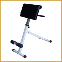 Sit-up Bench SUB1101 Apex Roman Chair 45 Degree ...