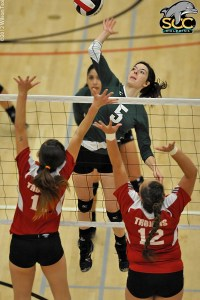 Emily Denham led SCC in kills and digs in a losing effort against Bellevue College.