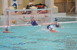waterpolo_hk_150816_01