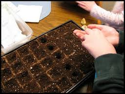 Tend to your professional and personal garden now. Do the work necessary to grow.
