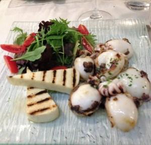 Cuttlefish at Wildner
