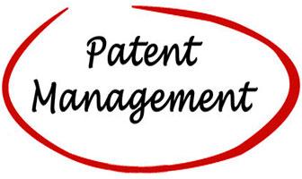 特許、実用新案、意匠、商標、及び国際特許出願