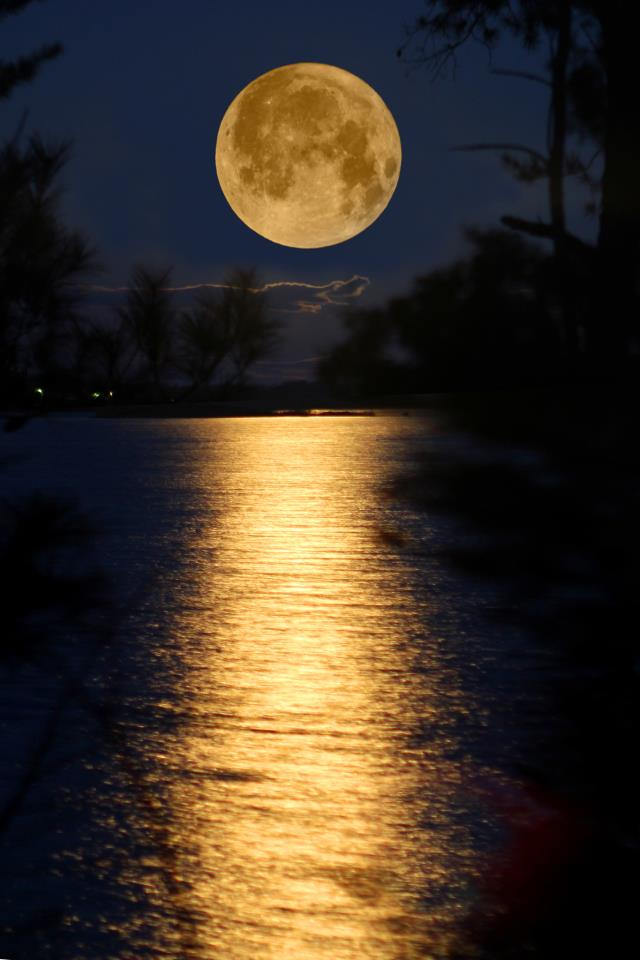 How To Put A Gif As Your Wallpaper On Iphone Friday The 13th And The Full Moon Springwolf Reflections