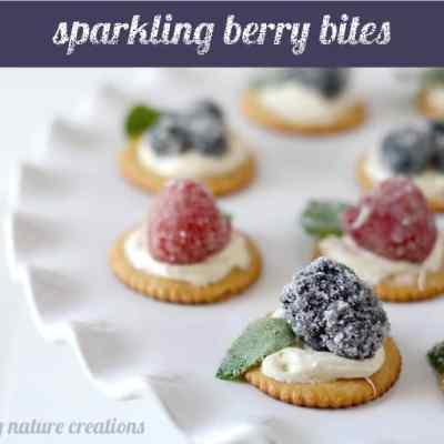 Sparkling Berry Bites