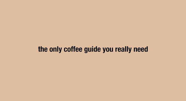 The Only Coffee Guide You Really Need