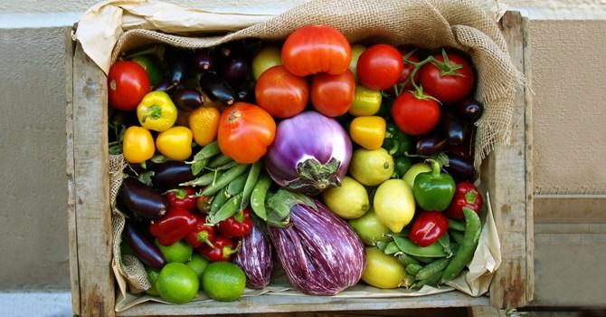 fruit-vegetable-stop-e4679