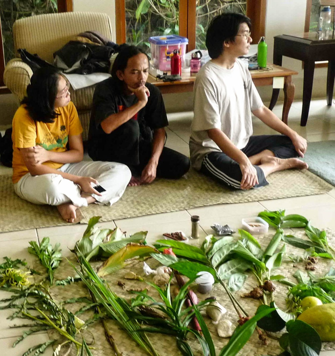 Medicinal plants workshop with KYLE group Bandung, Indonesia 2012