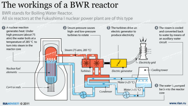 The workings of a BWR reactor Sputnik Images media library
