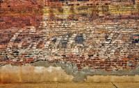 Wall Dog Murals  spydersden