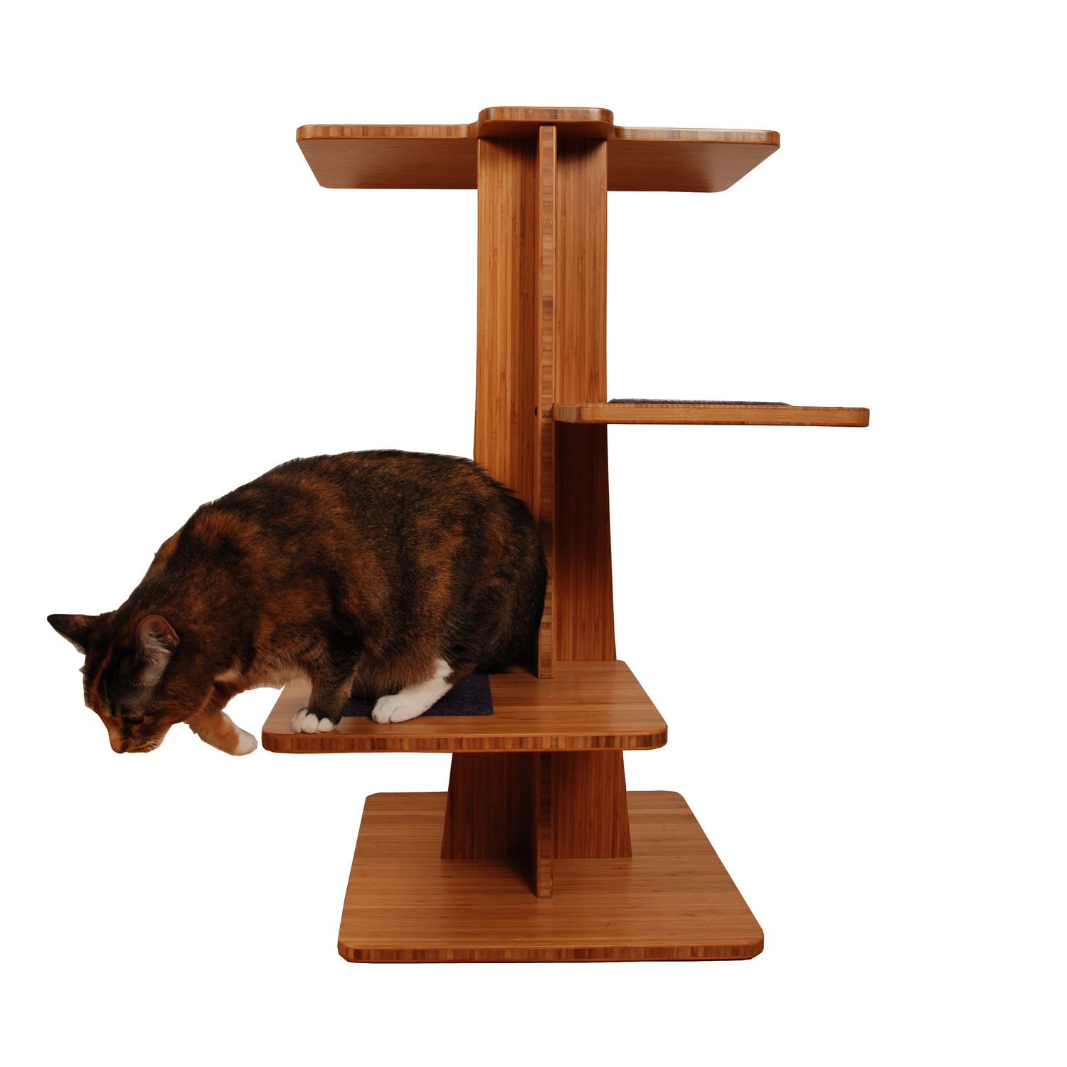 Cat Furniture For Sale Modern Cat Tree 3 39 Tall Acacia Tower Square Cat Habitat