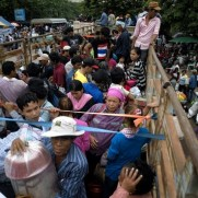 cambodian labor back to the country