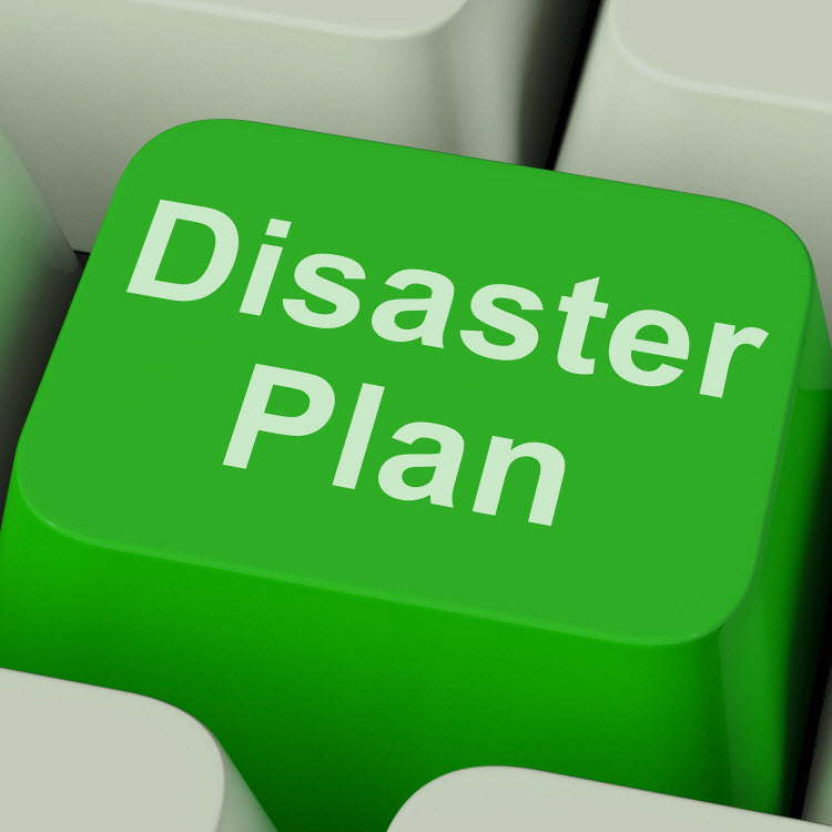 Disaster Recovery - SRS Support - recovery plans