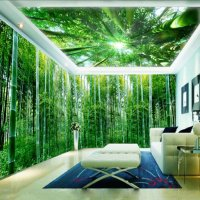 3d Wall Murals For Living Room. wall murals for living ...