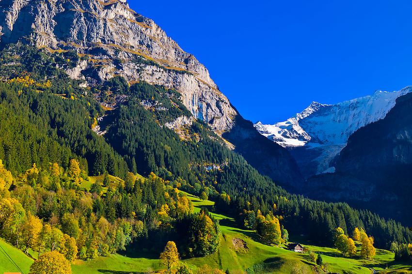 Bing Hd Wallpaper Fall Grindelwald Swiss Alps Canton Bern Switzerland Blaine