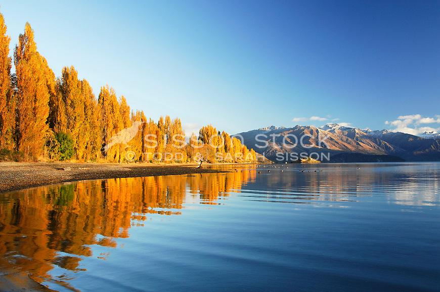 Fresh New Fall Hd Wallpapers New Zealand Photoraphy Autumn Reflection Lake Wanaka