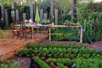 Environmentally Conscious Backyard Veg Garden   Plant ...