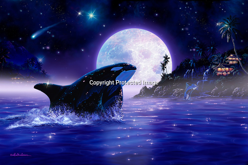 Cute Orca Wallpaper Orca Moon L Hr Jpg Christian Lassen