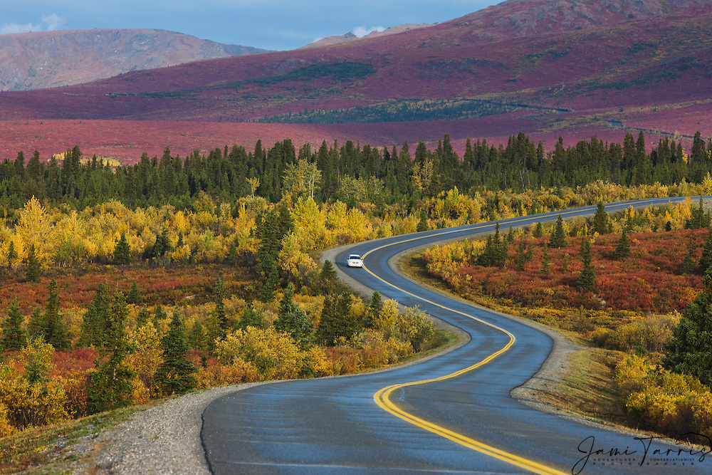 Fall Foliage Wallpaper Widescreen A Car Driving Down A Winding Road In A Colorful Autumn
