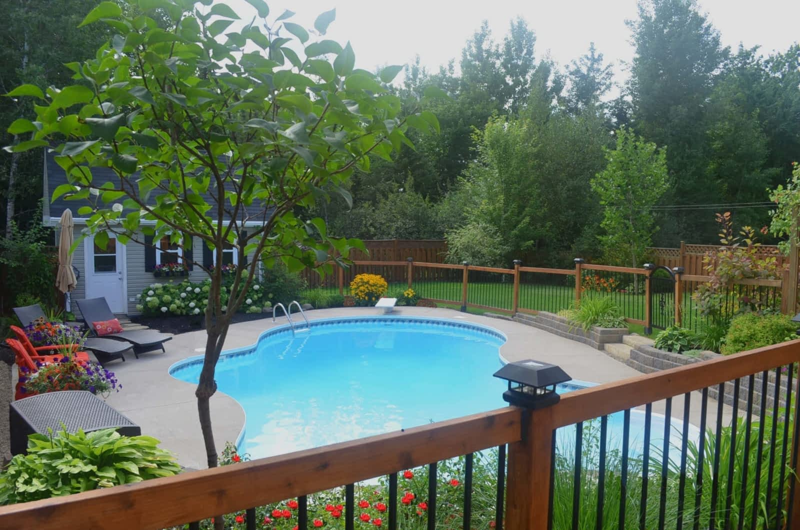 Jacuzzi Pool Amazon Amazon Pools And Spas Inc Opening Hours 75 Cityview Ave