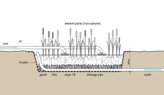 Vertical Flow CW SSWM - Find tools for sustainable sanitation and