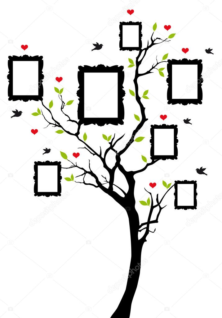 Family tree with frames, vector \u2014 Stock Vector © beaubelle #12702863