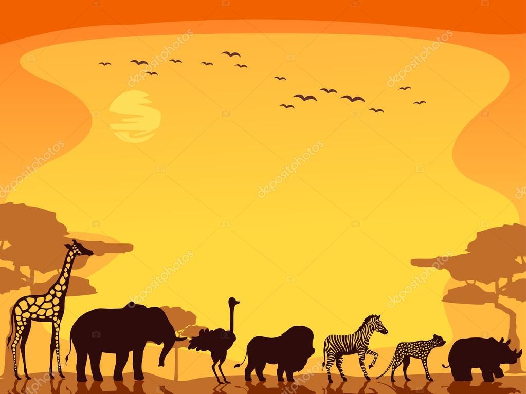Cute Animals Hd Wallpapers Free Download Safari Animals Background Stock Photo 48931691