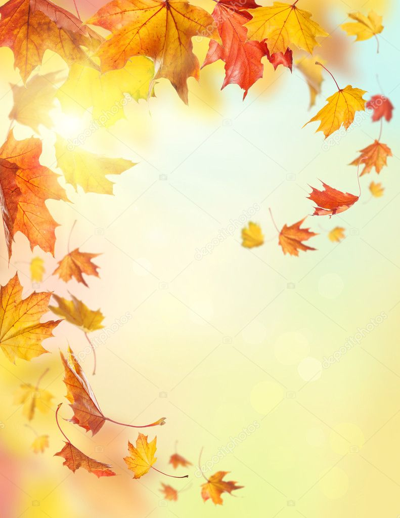 Falling Leaves Live Wallpaper Autumn Falling Leaves Stock Photo 169 Egal 13964009