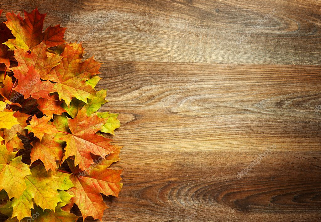Fall Pumpkin Wallpaper Yellow Wet Autumn Leaves On The Background A Dark Old Wood