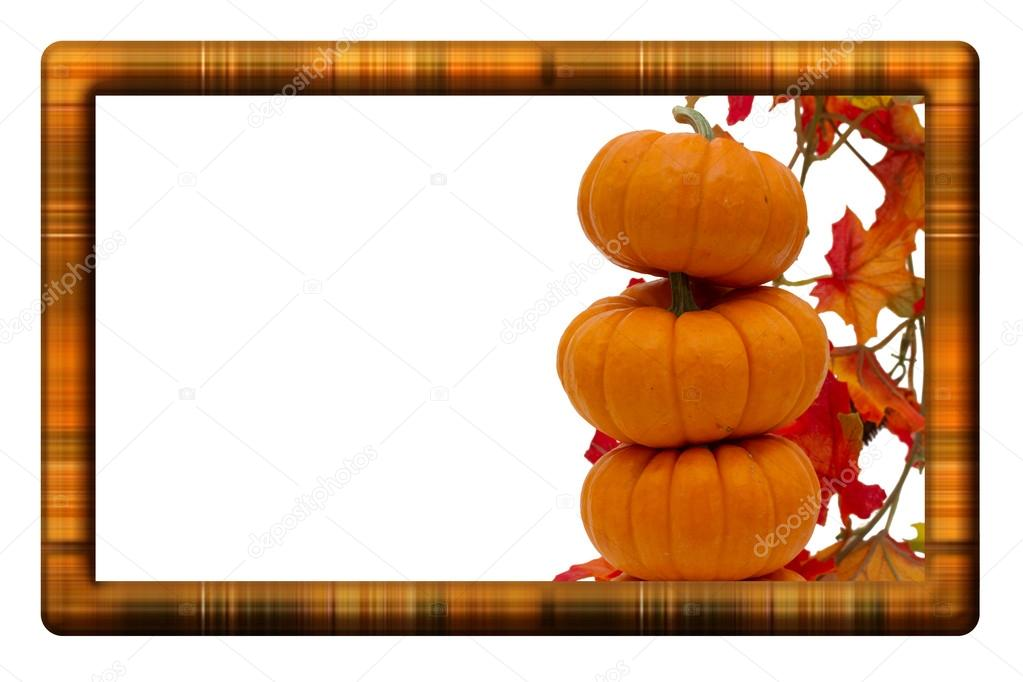 Fall Harvest Border \u2014 Stock Photo © karenr #13886442