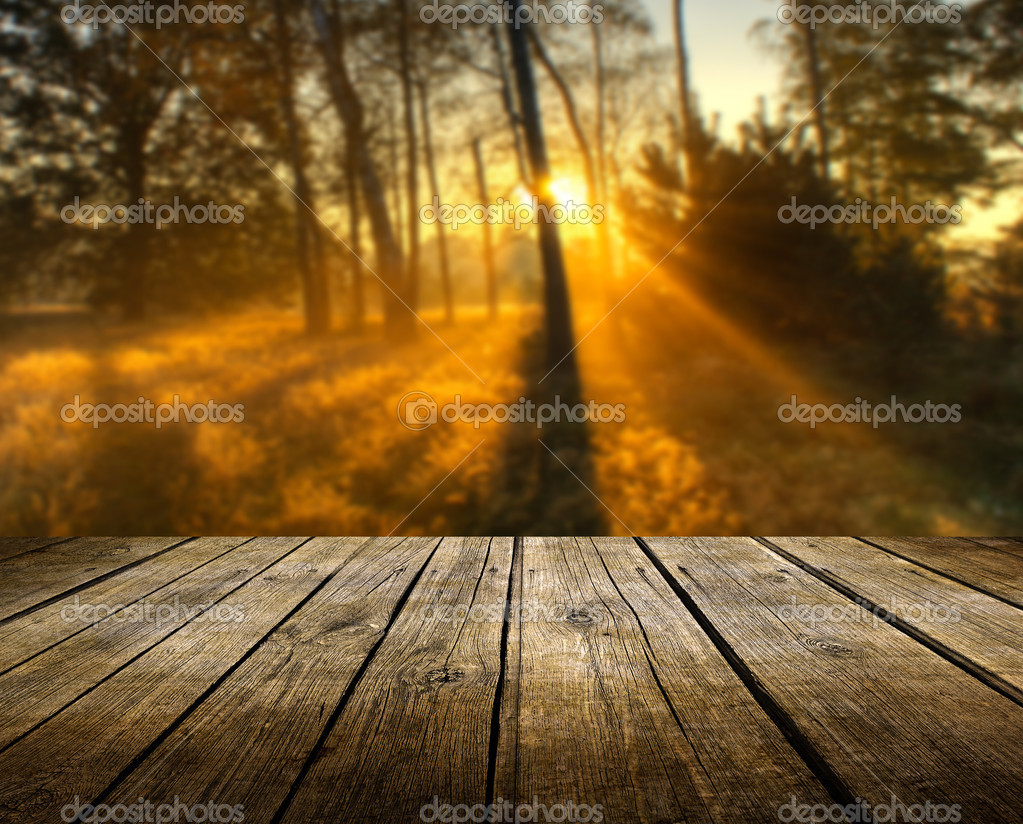 Rustic Fall Wallpaper Table With Autumn Background Stock Photo 169 Kwasny222