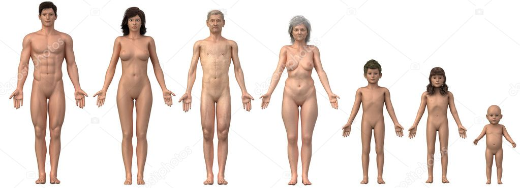 Whole family in anatomical position - any bust also as single image - anatomical position