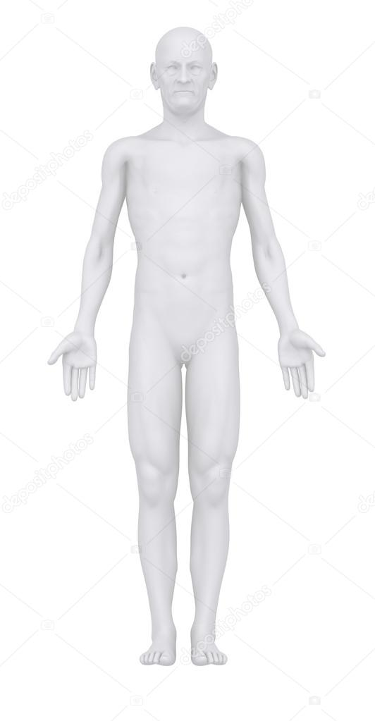 Old man in anatomical position anterior view \u2014 Stock Photo - anatomical position