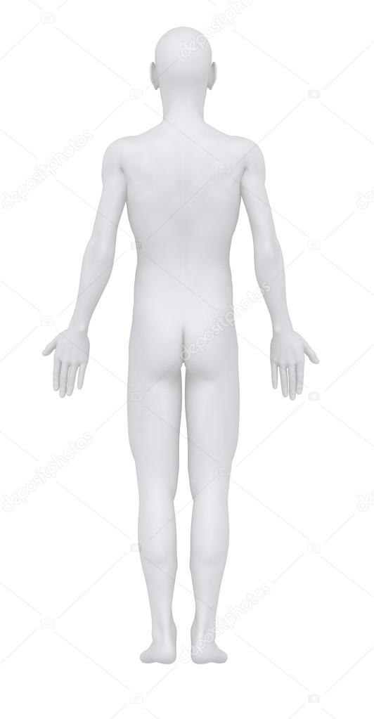 Anatomical position Stock Photos, Royalty Free Anatomical position - anatomical position