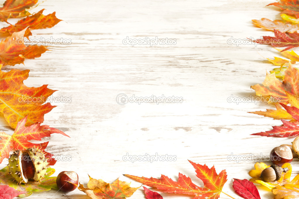 Autumn Falling Leaves Live Wallpaper Autumn Leaves On White Boards Background Border Stock