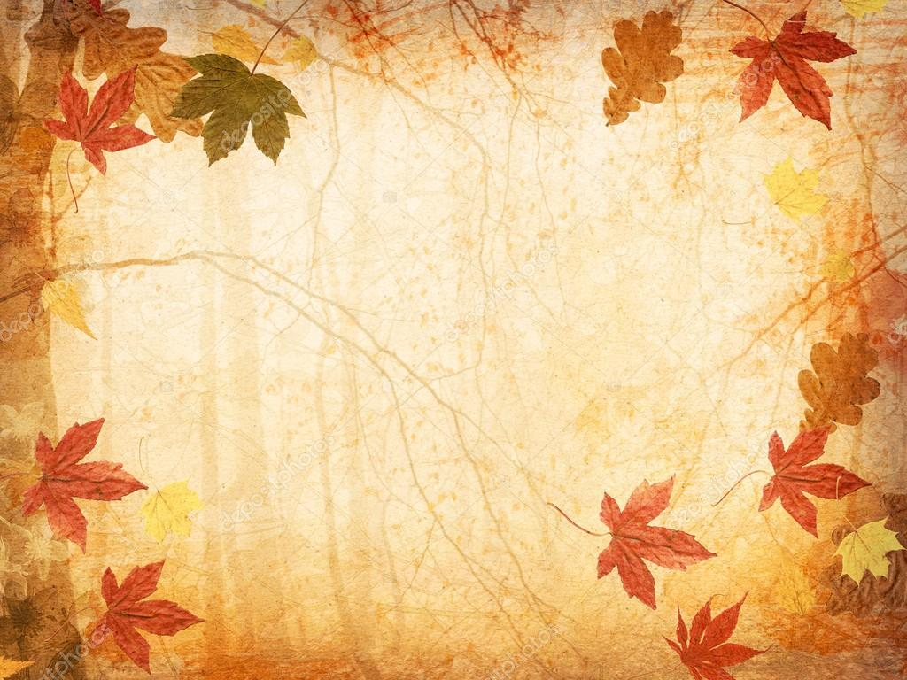Fall Leaves And Pumpkins Wallpaper Fall Leaves Background Stock Photo 169 Matttilda 17030135